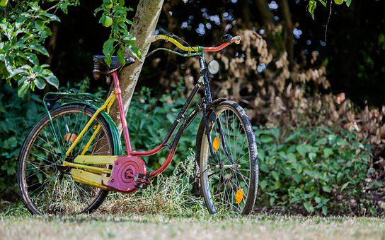 Bike, Colorful, Garden, Wheel, Nature, Color, Cycling