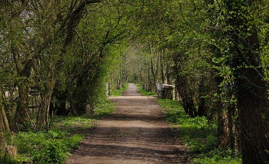 Disused Railway, East Sussex England, Walkway, Pleasure