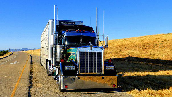 Truck, America, Transport, Trailer, Chrome, Vehicle