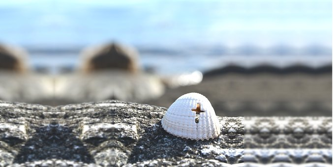 Background, Cross, Seashell, Faith, Christianity, Jesus