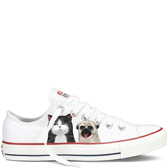 Cats, Dog, Shoes, Converse, Print