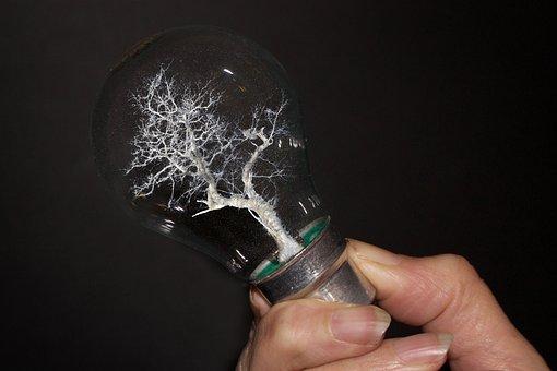 Lightbulb, Hand, Energy, Creativity, Light, Nature