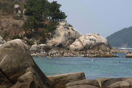 Break, Hyuhyuam, The Hermitage, Rock The Beach, Seagull