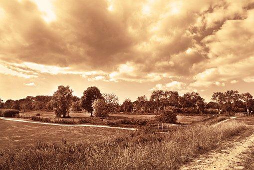 Landscape, Dutch Landscape, Rural, Field, Trees