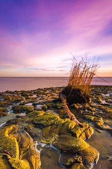 Wilhelmshaven, North Sea, Coast, Beach, Sea, Ocean