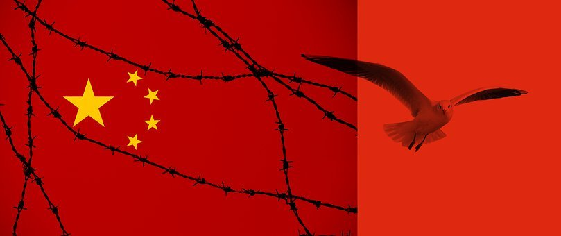 China, Flag, Barbed Wire, Freedom, Seagull
