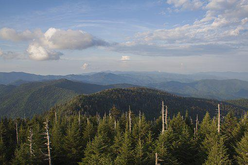Smoky Mountains, Nature, Clingmans Dome, Mountains