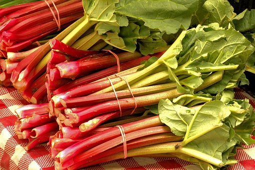 Market Fresh Rhubarb, Vegetables, Food, Plant, Harvest