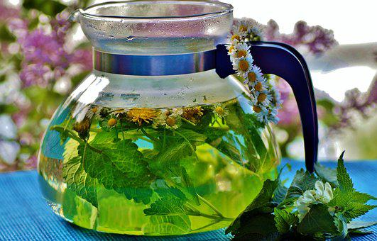 Herbal, Tea, The Infusion, Fresh, Herbs, Drink, Health