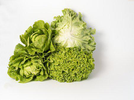 Lettuce, Varieties, Health