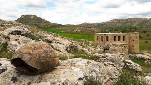 Izzet Pasha, Outpost, Date, Ancient, Architecture