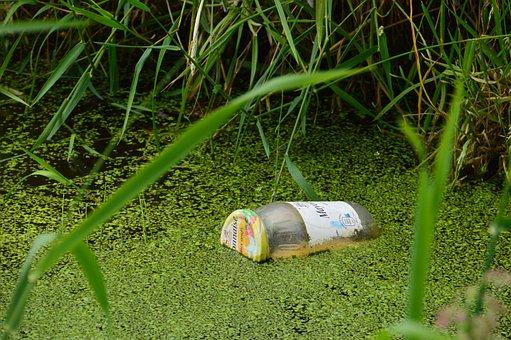 Pollution, Jar, Mayonnaise, Nature, Flora, Trash, Green