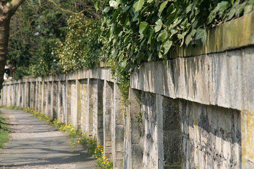 Cemetery Wall, Cemetery, Ivy, Old, Quarry Stone