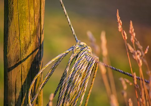 Pasture Fence, Post, Fence, Pile, Pasture, Demarcation