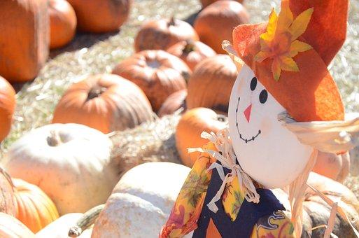 Scarecrow, Pumpkins, Pumpkin, Fall, Autumn, Halloween
