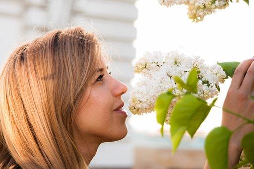 Girl, Flowers, Sun, Lilac, Beauty, Portrait, Woman