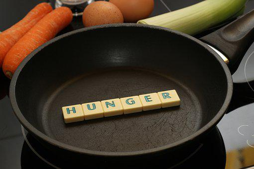 Hunger, Pan, Food, Eat, Egg, Vegetables, Carrots, Leek