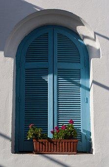 Windows, House, Old, Light, Color, Tree, Flower, Pot