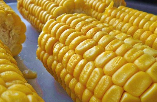 Corn On The Cob, Food, Yellow
