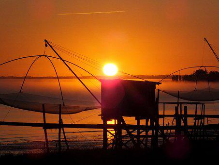 Fishery, Net Fishing, Plaice, Atlantic Coast