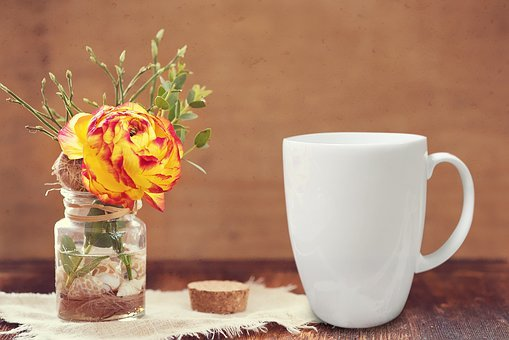 Flower, Vase, Mug, Decoration, Bright, Floral, White