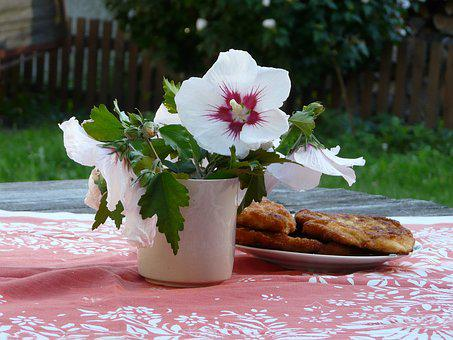 Summer, Countryside, Lunch, Steak, Cuttings, Hibiscus