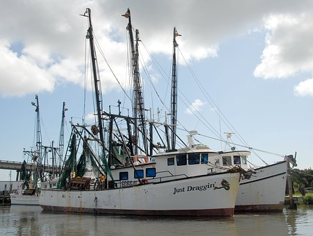 Commercial Fishing, Boat, Nets, Fish, Moored, Sea
