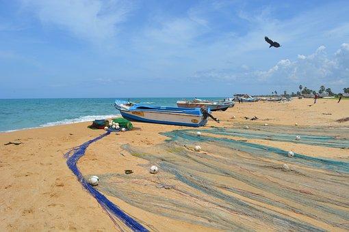 Beach, Fishing Net, Clear Sky, Fishing Scene, Srilanka