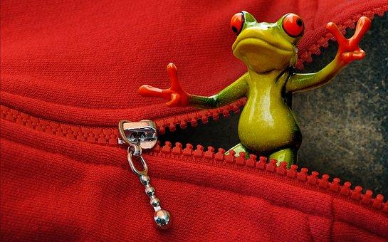 Zip, Open, Frog, Funny, Cute, Gesture, Sweet, Fun