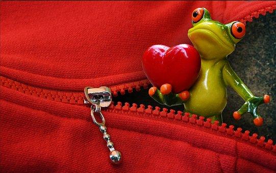 Zip, Open, Frog, Love, Valentine's Day, Heart, Funny