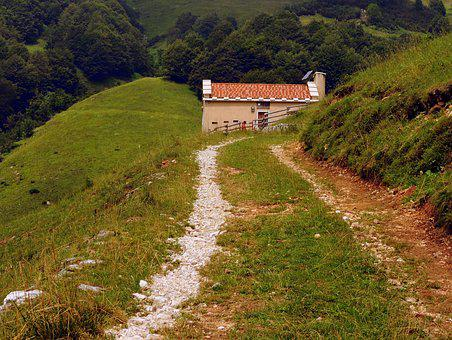 Alm, Trail, Hiking, Mountain, Walk, Veneto, Italy