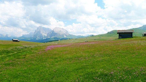 Nature, Landscape, Mountains, Alm, Seiseralm-südtirol