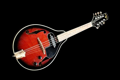 Strings, Stringed Instrument, Music, Musical Instrument