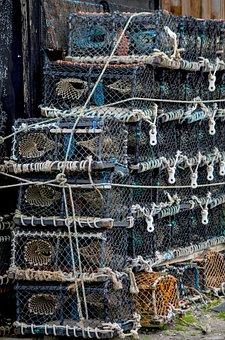 Fish Traps, Fishing, Fishing Net, Sea, Port, North Sea