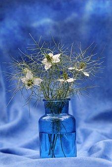 Still Life, Vase Blue, Flowers White, Tender