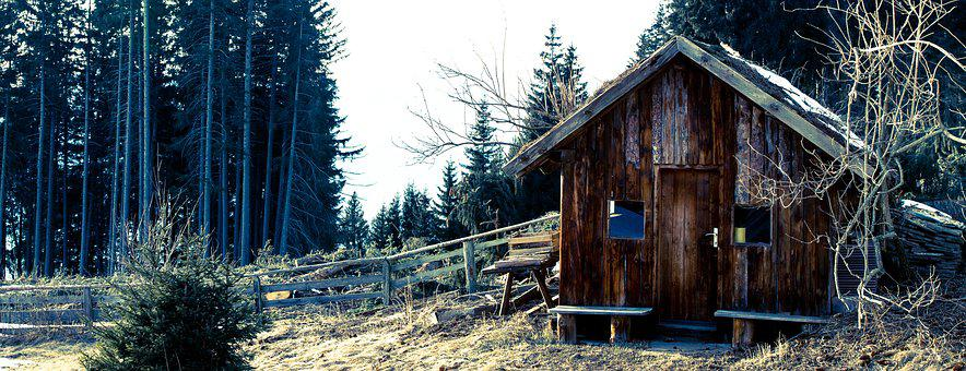 Wood, Hut, Forest, Lonely, Leave, Out, Decay, Woods