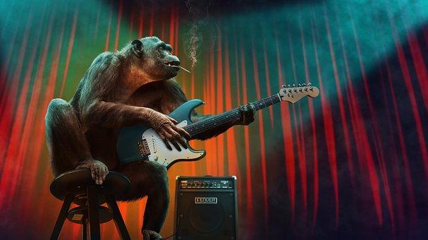 Music, Concert, Monkey, Guitar, Stage, Amplifier