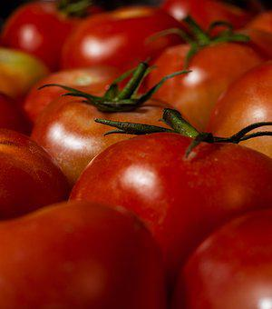 Tomatoes, Vegetables, Red, Food, Healthy, Harvest