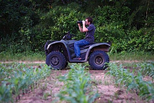 Person, Corn Rows, Field, Portrait, Farm, Corn, Land