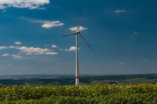 Pinwheel, Sunflower, Wind Energy, Power Generation