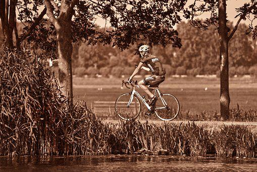 Racing Cyclist, Bicycle, Wheel, Cycling, Speed, Sport
