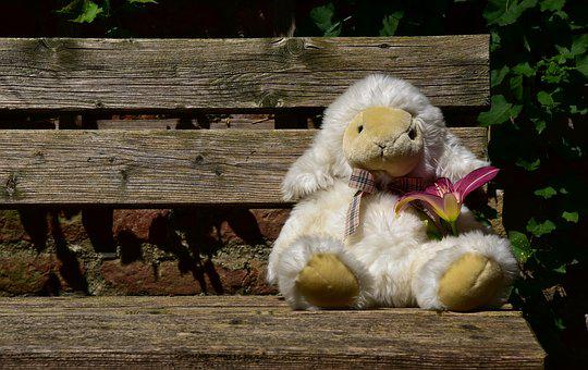 Sheep, Wait, Animal, Teddy Bear, Soft Toy, Flower