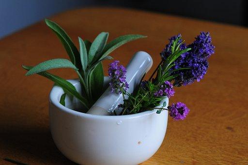 Mortar, Flowers, Pharmacy, Lavender, Bless You, Plant