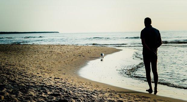 Beach, Seagull, Water, Sea, Wave, Bird, Nature, Man