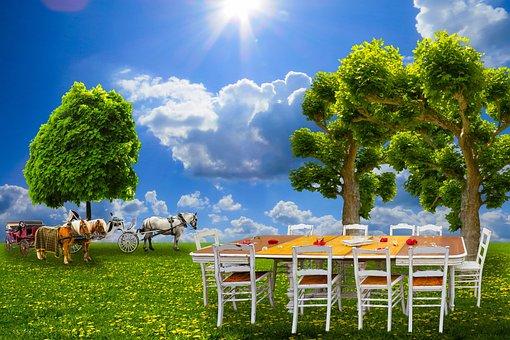 Nature, Landscape, Festival, Sommerfest, Party, Coach