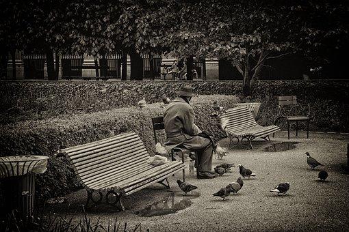 Olttimer, Old, Man, Sit, Bank, Europe, Paris, Park
