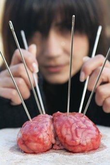 Brain, Mind, Idea, Fiction, Blood, Pain, Science, Test