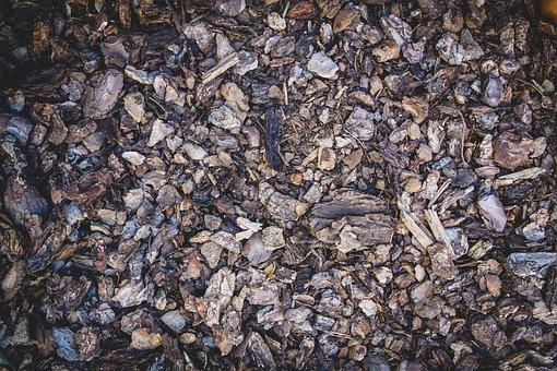 Earth, Dirt, Bark Mulch, Ground, Bark, Humus