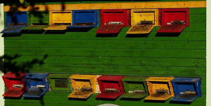 Beekeeper, Bees, Nature, Multicolored, Morning Sun