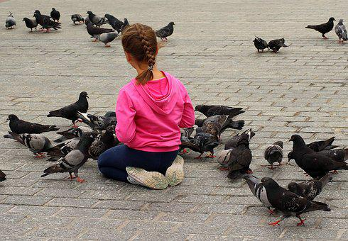 The Little Girl, Child, People, Pigeons, Birds